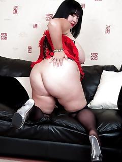 BBW wearing sexy stockings